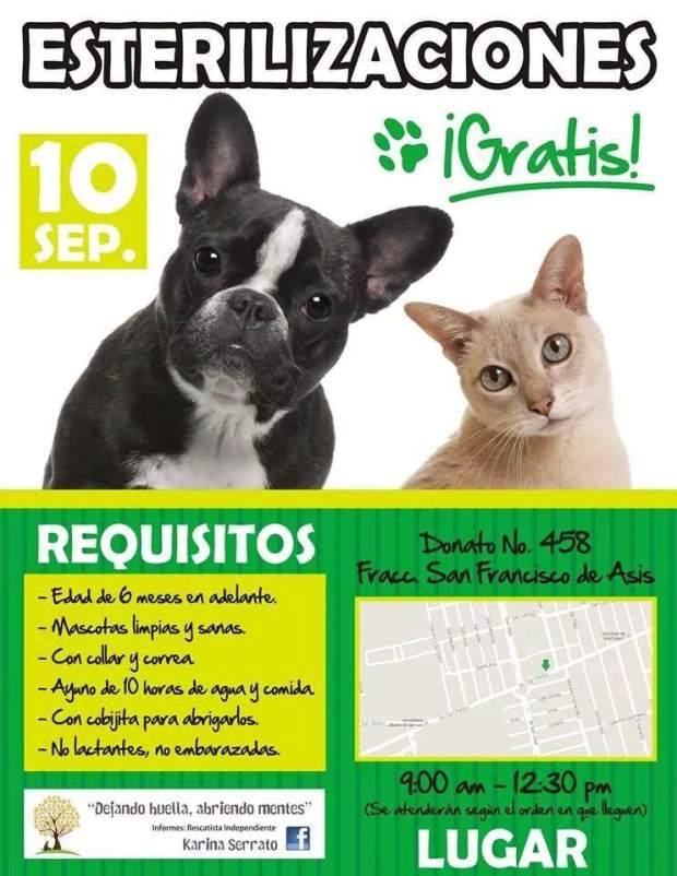 Esterilizaciones gratis @ Donato 458 | San Luis Potosí | México