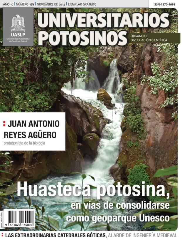PORTADA Y FORROS 181 C