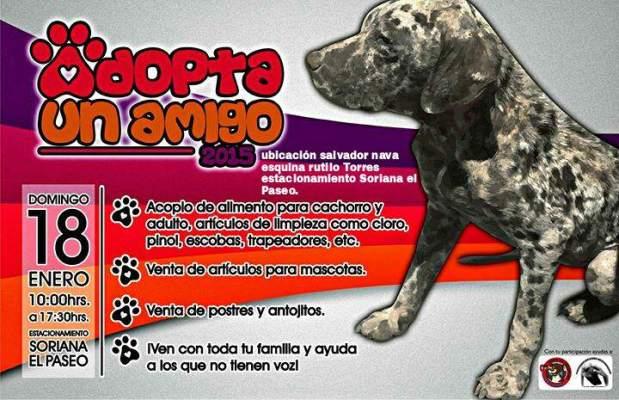 Adopta un amigo @ Estacionamiento Soriana el Paseo