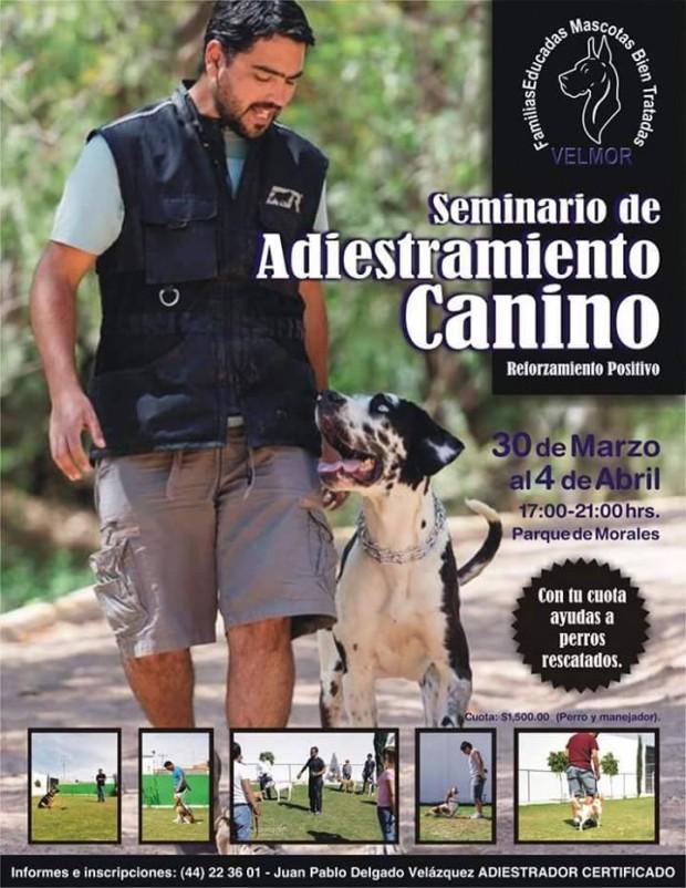 Seminario de adiestramiento canino