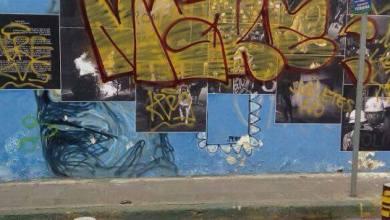 Photo of Grafitean trabajo de fotógrafo potosino en menos de 24 hrs