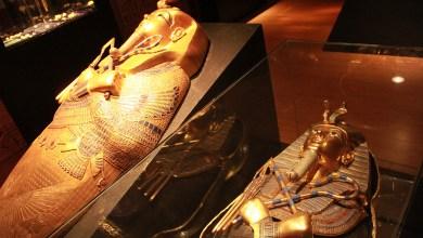 Photo of La exposición de Tuntankamón ha recibido más de 35 mil visitantes
