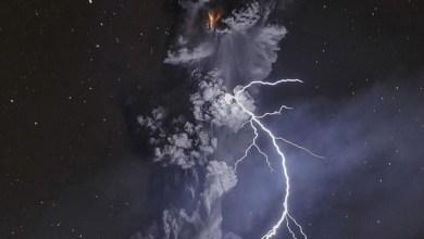Photo of Mexicano gana concurso de National Geographic de fotografía