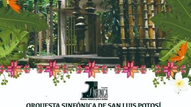 Photo of Dará la OSSLP espectacular concierto en Xilitla