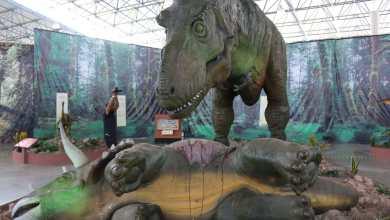 Photo of Inauguran Tierra de Dinosaurios en las instalaciones de la FENAPO