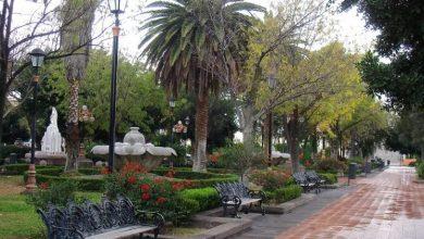 Photo of Invitan a reforestar y restaurar el Jardín de Tequis