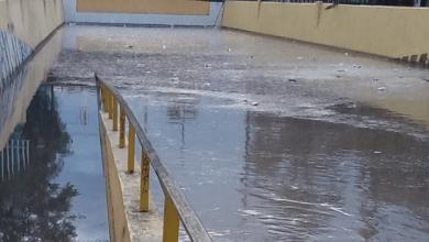 Photo of Lluvia genera inundaciones en colonias de Soledad y SLP