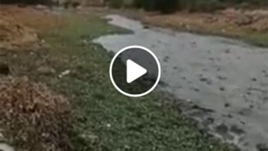 Photo of Vídeo: aguas negras descargan en la Presa de San José
