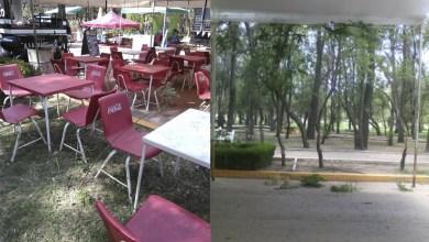 Photo of Eventos dañan y generan basura en el Parque de Morales