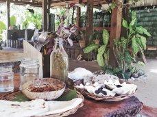 Hummus und hausgemachtes Brot im Eco Garden Café (Foto: Zenz)