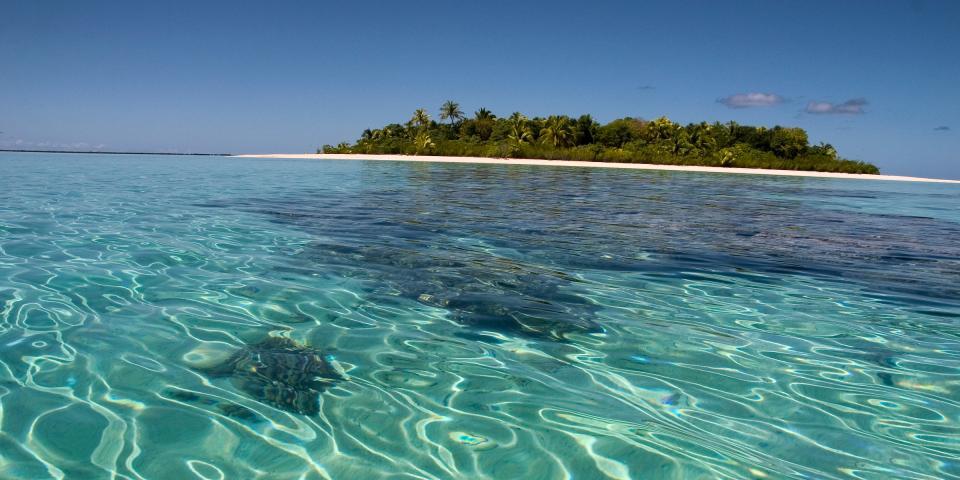 Autismo, dalla giornata mondiale, alle scoperte: Tahiti scoperta nel 1767 - Photo Credits: web