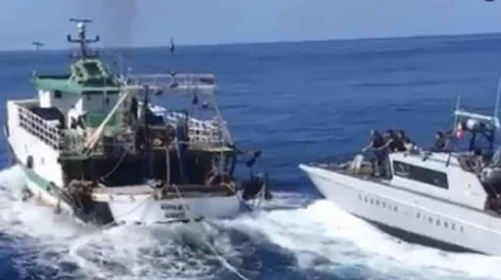 Peschereccio tunisino sperona una motovedetta italiana: aperto il fuoco