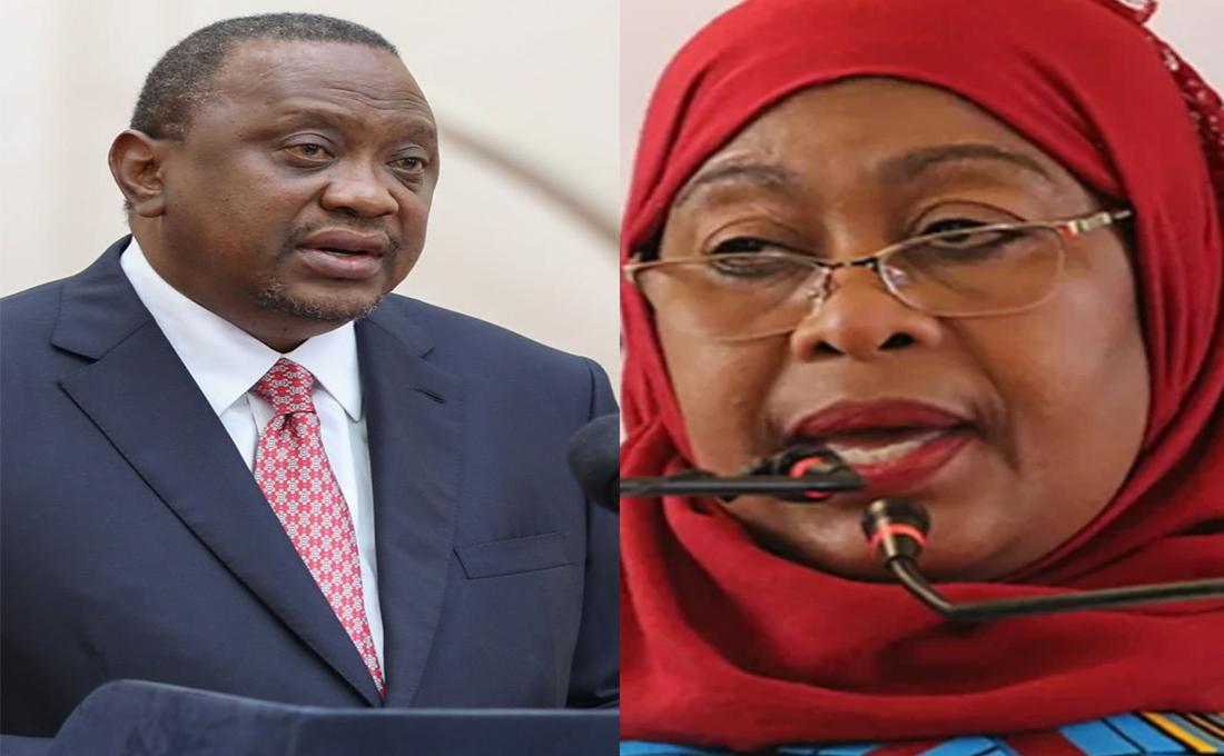 What Tanzania's President Samia Suluhu's visit to Kenya means