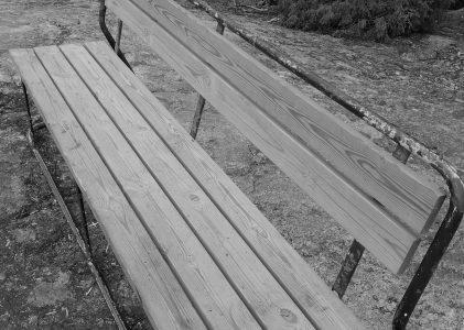 Älä tallaa nurmikoita, älä puita vahingoita