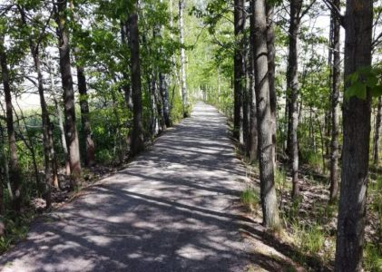 Otaniemi – Aalto-yliopisto