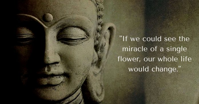 3 Interesting stories from the life of Gautama Buddha and Quotes ...