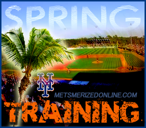 Image result for 2017 mets spring training