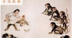Dræb kyllingen for at skræmme aben
