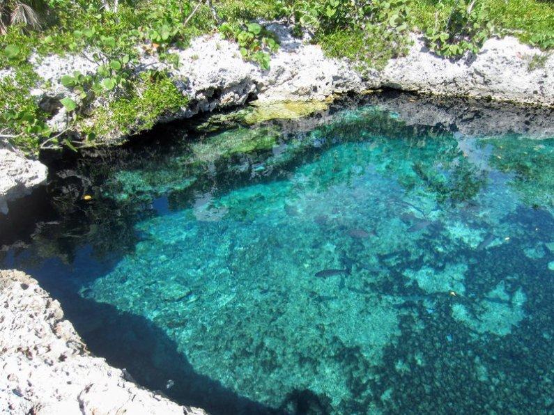 cueva de los peces svinebugten cuba