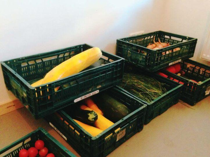Gemüse in der Ausgabestelle Tante Olga