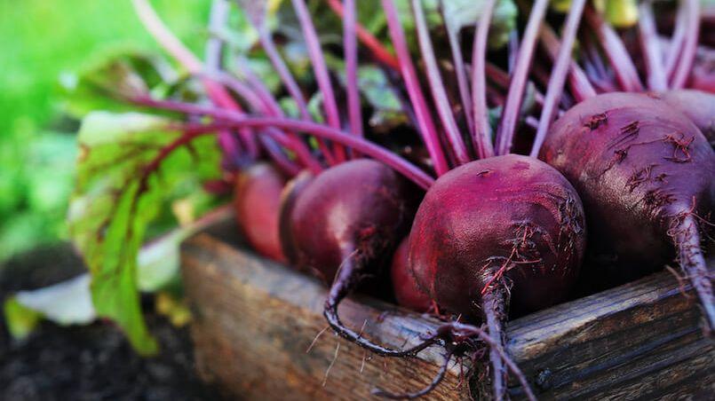 Lecker und gesund: Rote Bete (Foto: Ulada/Shutterstock.com)