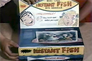 How fun it was! Best memories of the childhood! Pa7gZ 1498762921 8896 list items whamo instantfish
