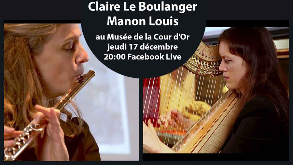Live Insolite Flute Harpe Musee Cour D Or Metz