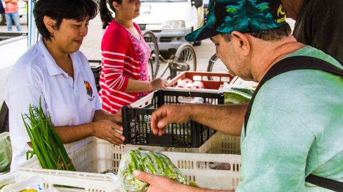 Guarujá troca recicláveis por alimentos