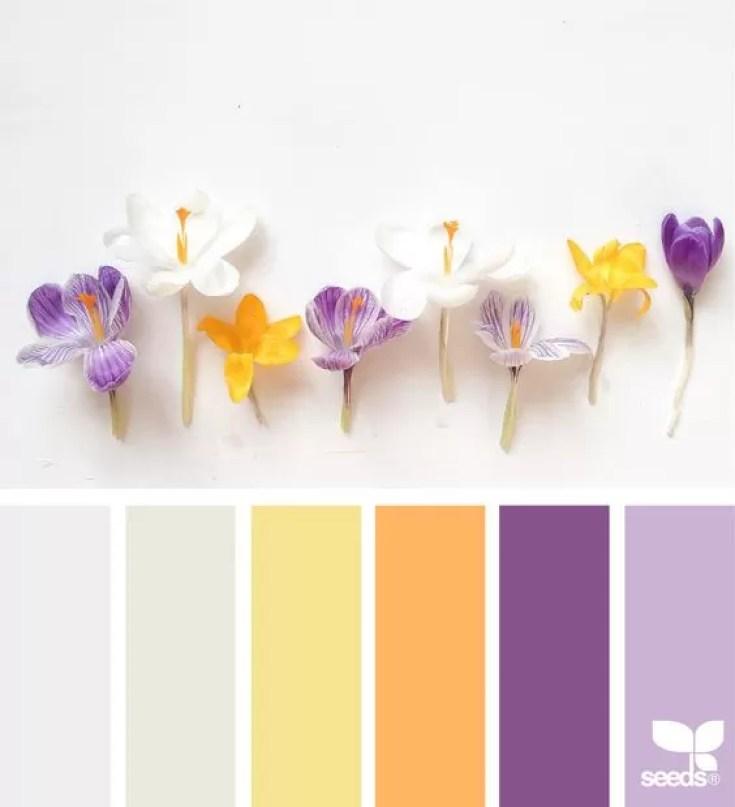 como combinar cores na decoração sem medo design seeds