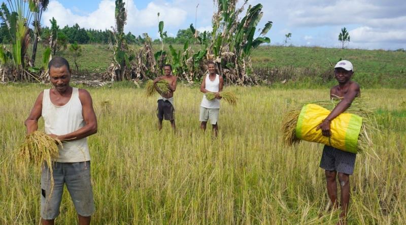Dimanche 22 décembre – Triel – Vente de produits malgaches