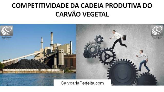 competitividade do mercado de carvão vegetal