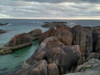 Día 13. Elephant Cove, en Denmark. Frío y nublado