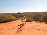 Día 4. Conduciendo hacia los lagos salados en Shark Bay