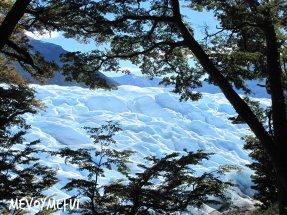 Nature Perito Moreno