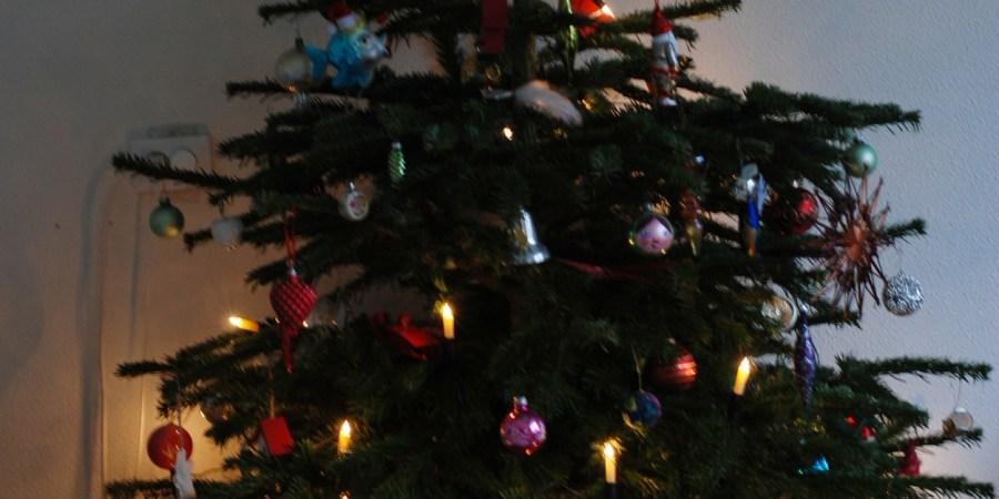 budget kerstboom