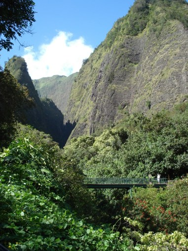 Iao Valley (19)