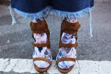 socks-with-sandals-cats
