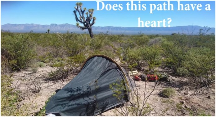 Searching for Peyote in the Mexico desert (VIDEO)
