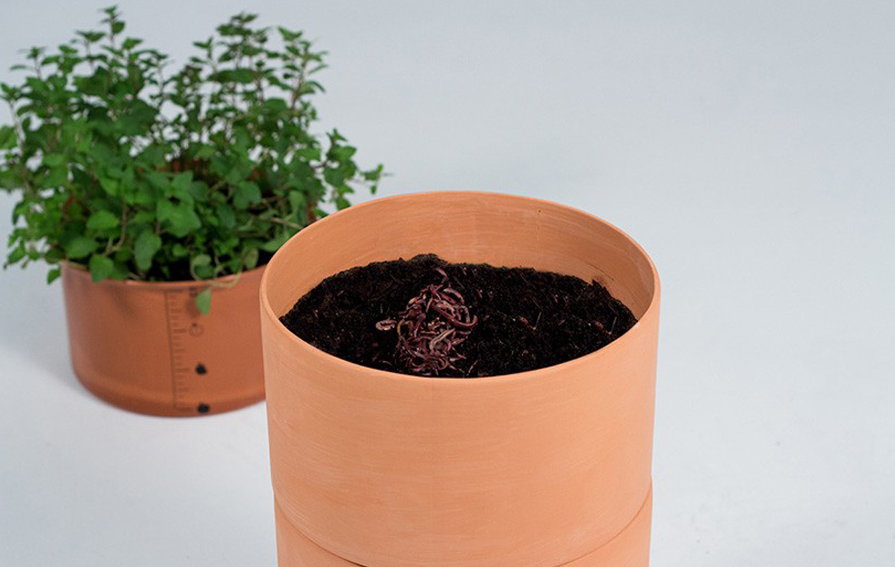composta-uroboro-natural-planta-3