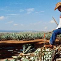 10 Orte und Städte in Mexiko die man gesehen haben sollte...