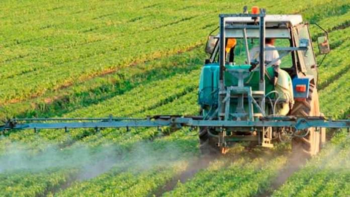 México mantendrá crecimiento en la producción de alimentos en la próxima década