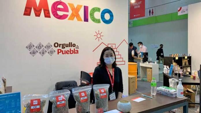 Potencial comercial para puebla en exportación de café a Corea del Sur