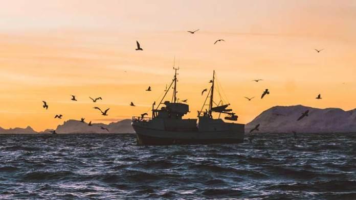 México y 13 países encabezan plan de economía oceánica sostenible