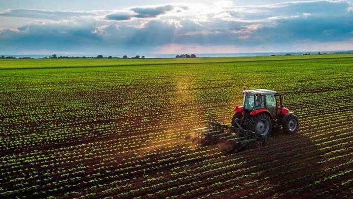 En 2020 exportaciones del campo en Guanajuato incrementaron 10%