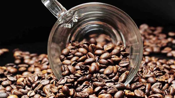 Nestlé abrirá innovadora planta de café en Veracruz