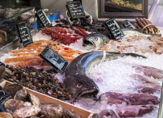 Encontrar pescado en México, buscar pescado en Méjico