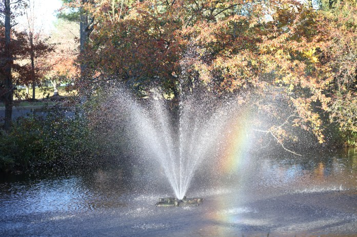 wedding rainbow lake