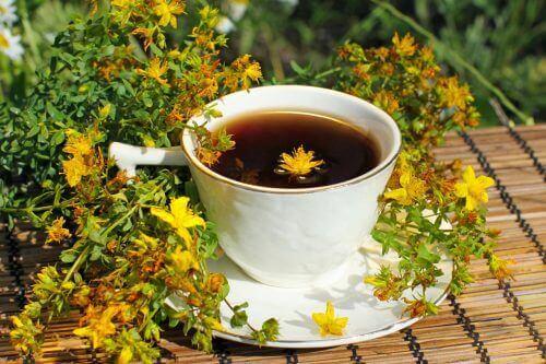 5 φαρμακευτικά βότανα για να καταπολεμήσετε την κατάθλιψη, βάλσαμο