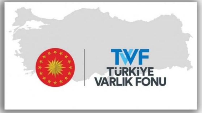 Paralel hazine: TVF