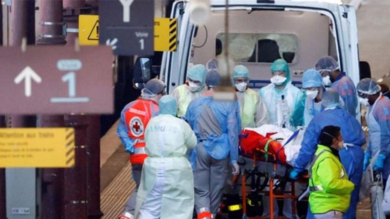 WHO: Coronavirus yarasalardan insanlara başka bir hayvan yoluyla bulaştı